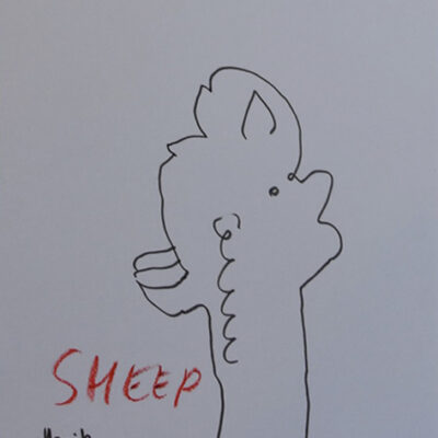 197 pi Sheep 2021